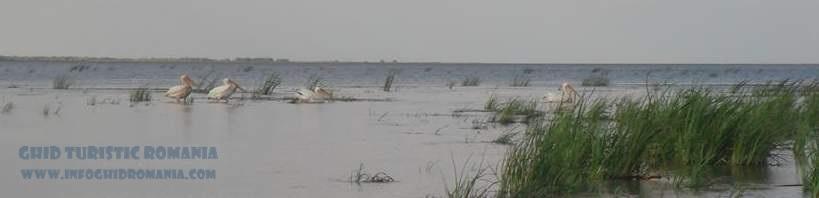 Foto Delta Dunarii